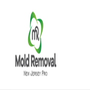 Water Damage Restoration & Mold Removal